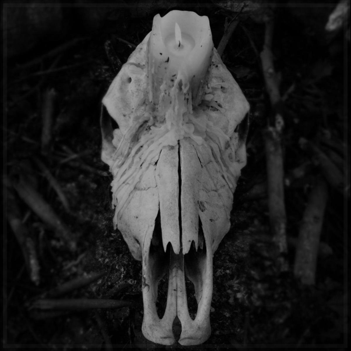 Track Premiere: Open Grave- Worsen