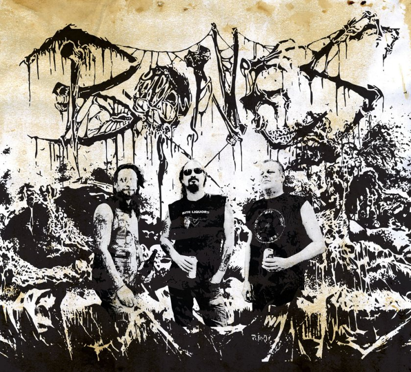 Bones-bandpic